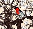 Little imaginary red bird in a sakura