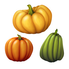 assorted shapes pumpkins, vegetables illustration