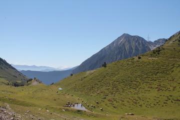Paisaje de alta montaña en los Pirineos, con vacas y un lago