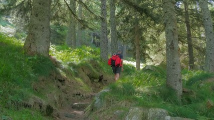 man hiking in a wild forest