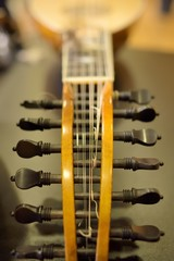 headstock mandolin