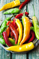 Chili Peppers, Colorful Spicy Peppers
