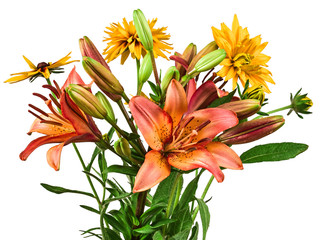flowers bouquet of lilies on white background