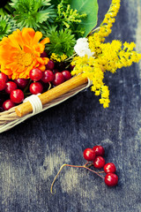 Bouquet of autumn flowers and berries in basket, toned