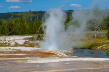 Cliff Geyser - Black Sand Basin Yellowstone