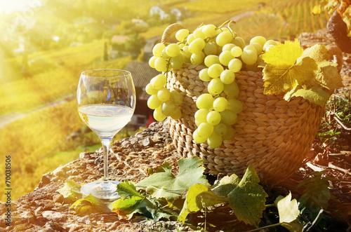 Fotobehang Planten Wineglass and basket of grapes. Lavaux region, Switzerland