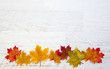 Autumn Thanksgiving Background - 70038982