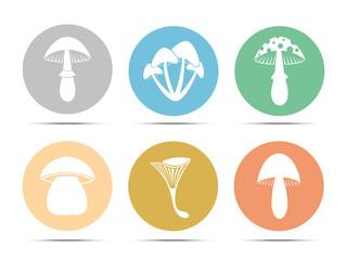 set mushroom icon