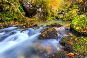 Creek deep in mountain forest