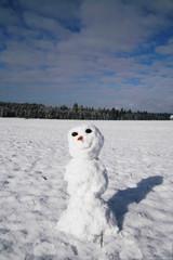 freundlicher schneemann winter