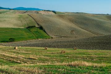 Paesaggio toscano di campagna, colline coltivazioni, agricoltura