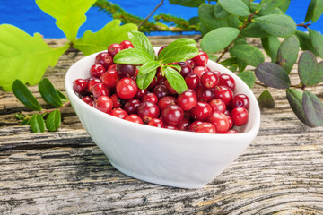 Fresh cranberries in bowl with green leaves on wooden plank