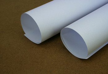 Rolled White Paper Sheet