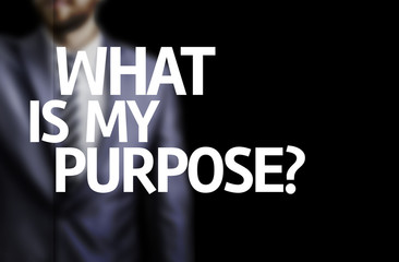 What is My Purpose?  written on a board