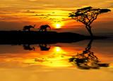 puesta de sol en Africa - 70046978