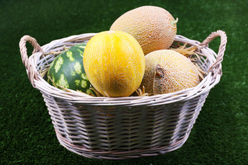 Melons and watermelon in oval wicker basket on green background