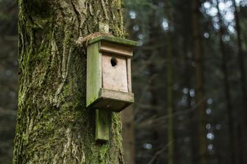 Vogelhaus im Wald