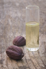 Jojoba (Simmondsia chinensis) seeds and oil