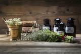 The ancient natural medicine, herbs and medicines