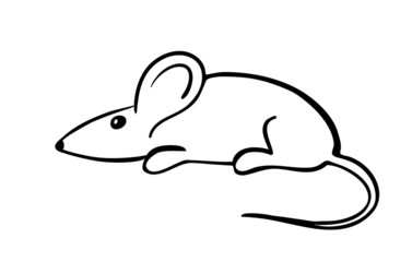gray mouse, vector illustration