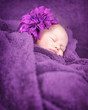 Sweet baby sleep