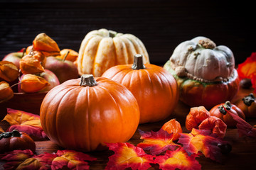 Pumpkins for Thanksgiving and  Halloween