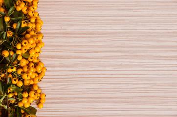 yellow berry background