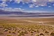 Zdjęcia na płótnie, fototapety, obrazy : Deserto di Dalì,Bolivia
