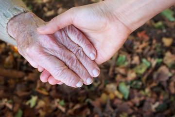 Helping hand - Autumn