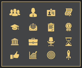 Business career icons set