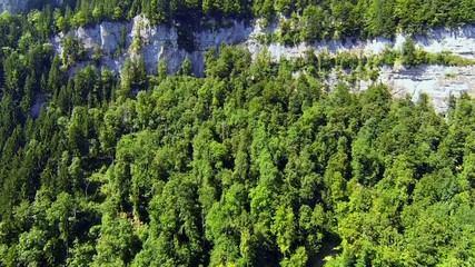 flying upwards over forest and cliffs