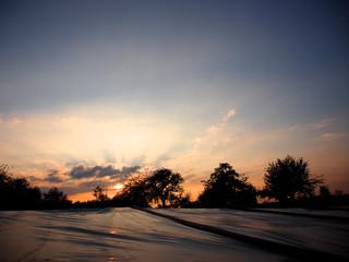 Sonnenuntergang hinter Bäumen