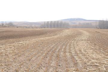 Farmland