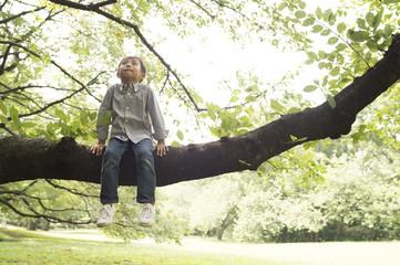 boy relaxing on tree