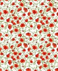 small poppy flower ornamental seamless background