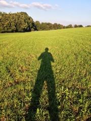 Langer Schatten Wiese
