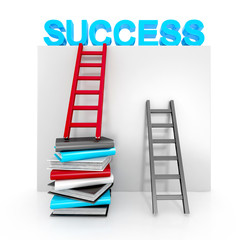 ladders and books up to success. business concept