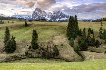 Alpe Di Suisi Dolomite italy