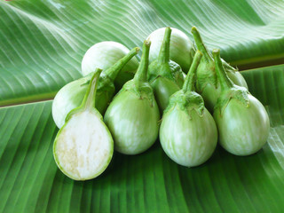 Small round green eggplant