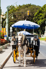 Horse carriage parked in andalusia, spain
