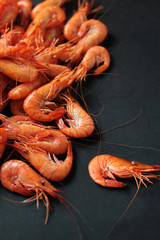 Crevettes-6511