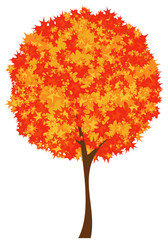 autumn season maple tree design