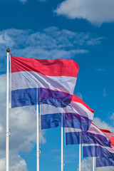 Row of five Dutch national flags