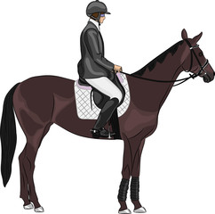 vector of a jockey on a horse