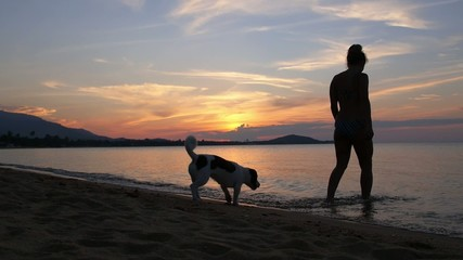 Woman with Dog in the Sea at Sunset. Slow Motion.