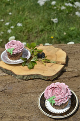Fruity blueberry cupcakes