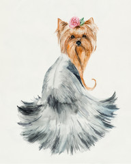 Dog with a rose. Yorkshire terrier. Pink flower and hair dress.