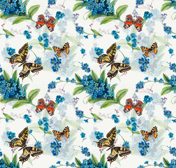 Seamless pattern of forget-me-not. Flowers and butterflies