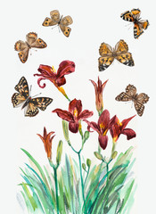 Bouquet of lilies with butterflies