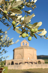 Olive branch (Olea europaea) and romanesque hermitage